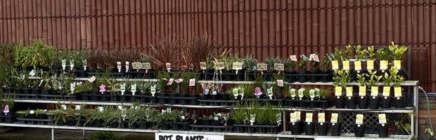 Plants at Yarra Farm Fresh